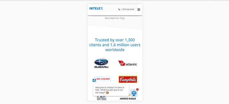 Intelex Technologies-Mobile 2