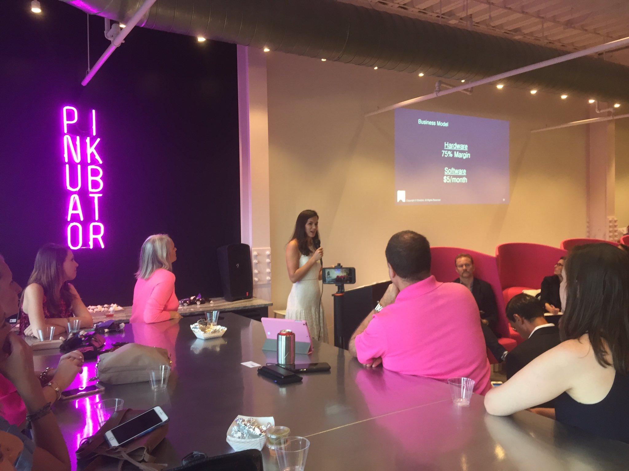 Cindy Eckert pitch investors meeting